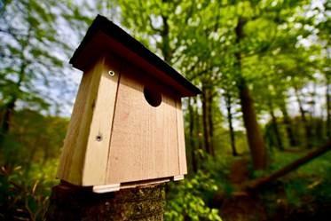 Fuglehuse til alle der mangler et sted at bo...